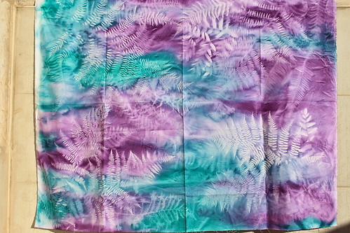 Sun-printed fabric with ferns