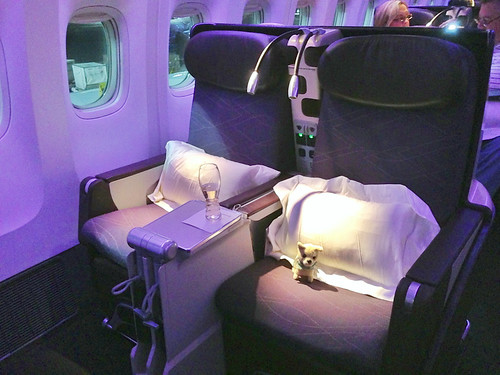 Virgin Australia L.A. to Melbourne (via Sydney)