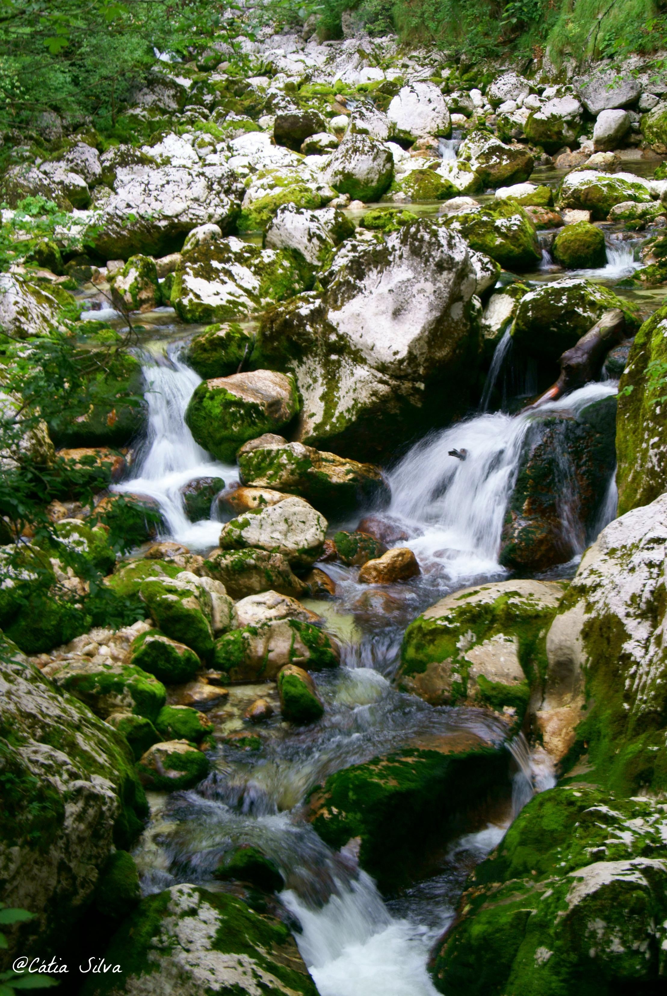Slap Slavica - Lago Bohinj - Eslovenia (5)