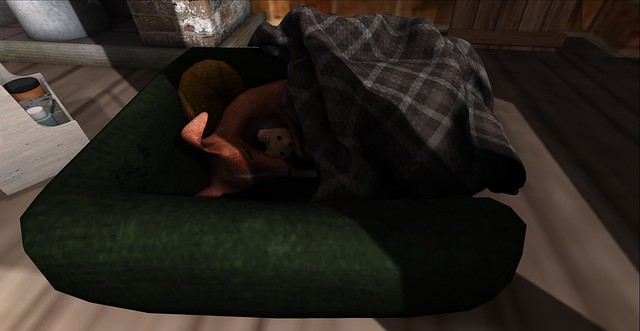 Sleepy Hound
