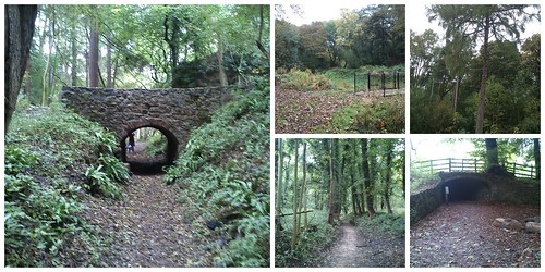 Calke Abbey - Ticknall Limeyards