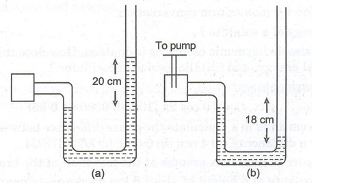 CBSE Sample Papers for Class 11 Physics (Solved)