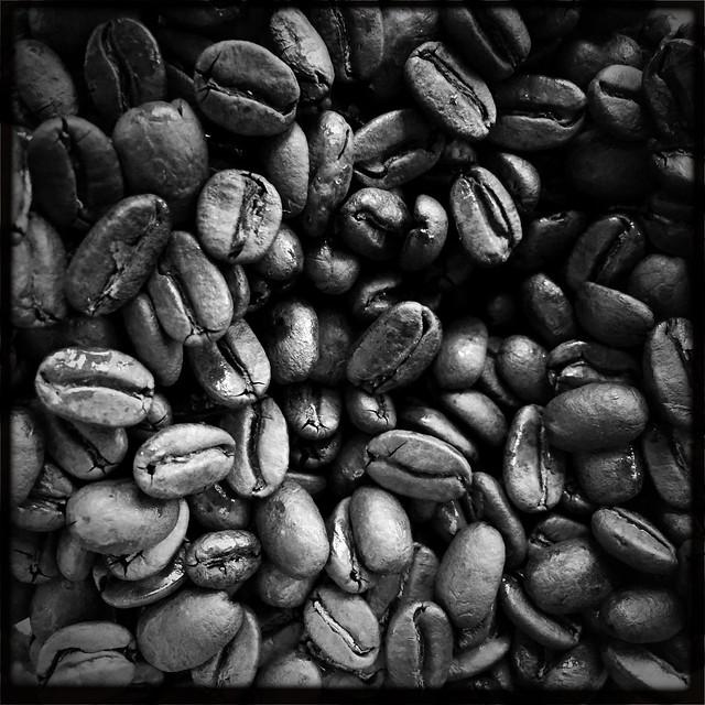 Papua New Guinea Namugo Smallholder coffee bean - Bridgeport Coffee