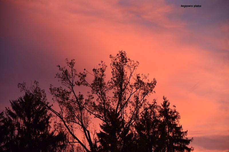 Twilight in Feldbrunnen