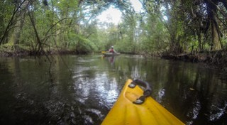 South Edisto River-080
