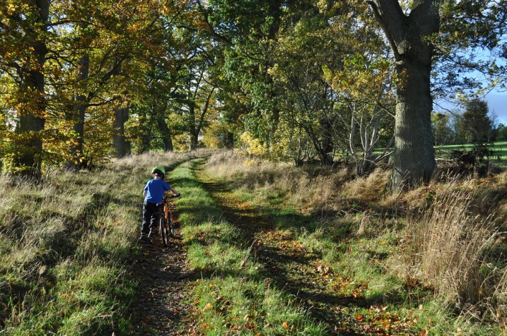 Autumn family bike ride in the Scottish Borders