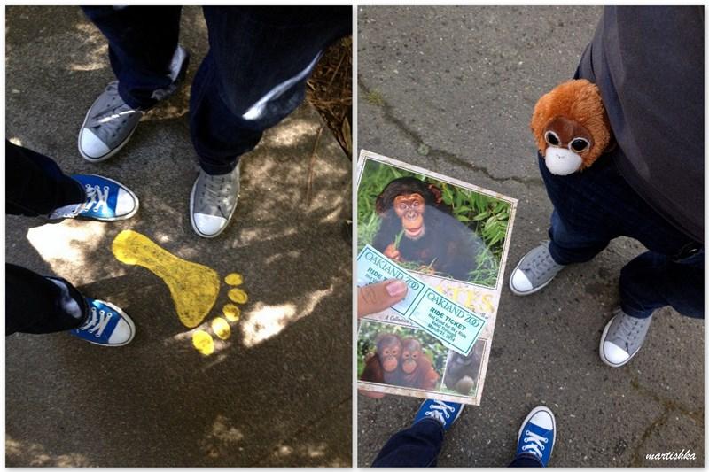 Oakland Zoo (33)
