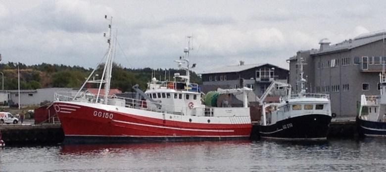 fiskeback12juli_2015-3 - 1
