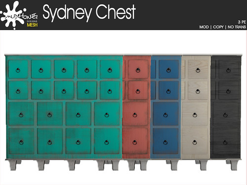 mudhoney sydney chest