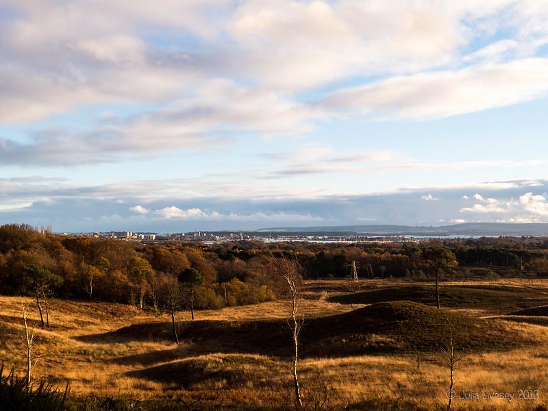 View over Upton Heath