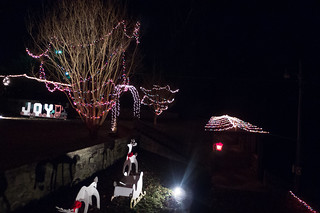 Pacolet Christmas Lights-001