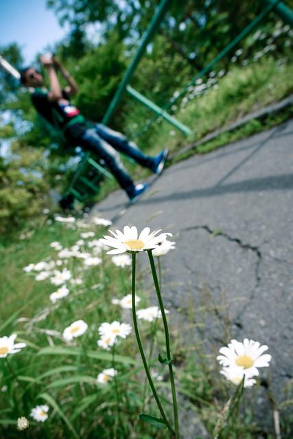 Hokkaido_day3_93