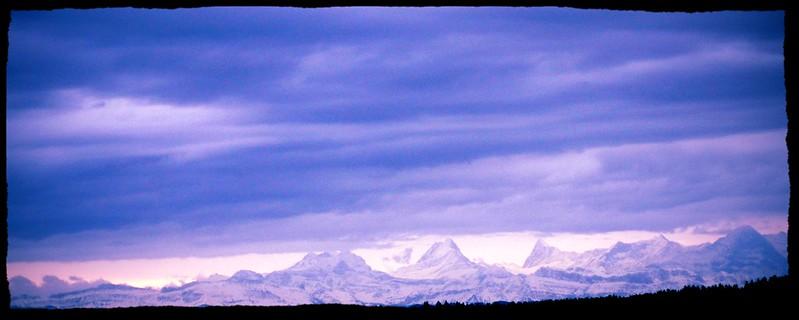 Bernese Alps from Langendorf