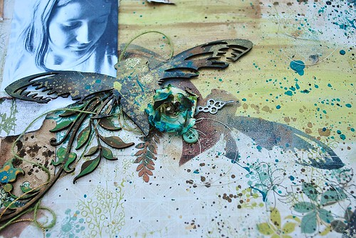 Cicada and Masking, IVY, ALLassiter