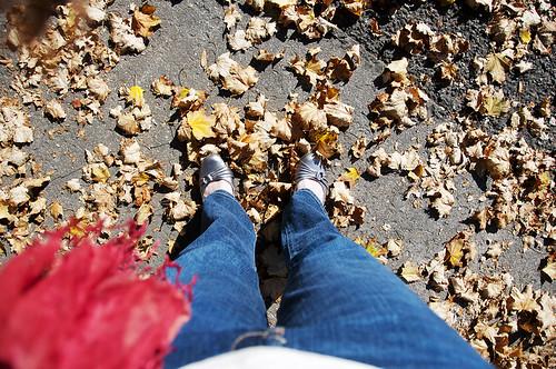Fall 0