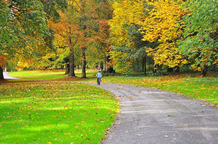 Cycling through the grounds of Mellerstain House, during our stay at West Lodge
