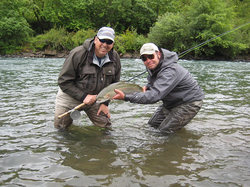 Oregon Summer Steelhead