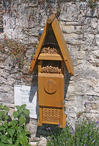 Bug House in the Leechwell Garden