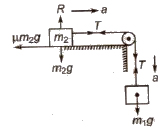 CBSE Class 11 Physics Notes : Laws of Motion
