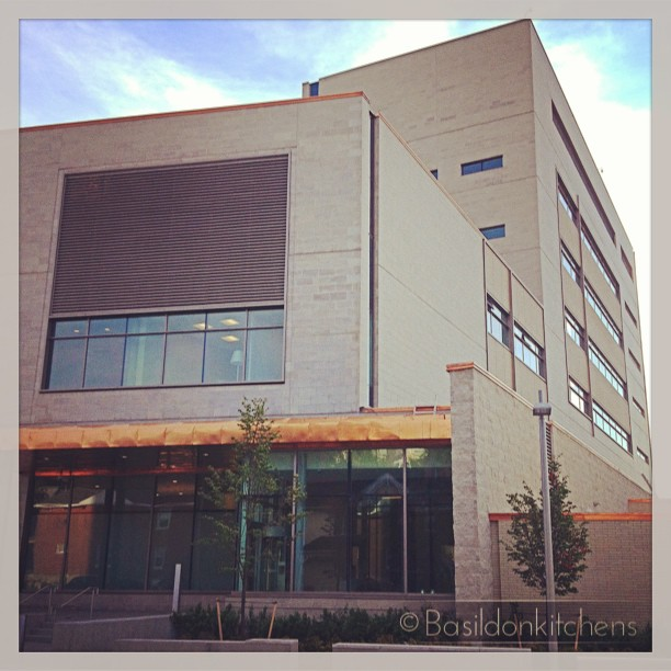 July 22 - trial {this is the new courthouse in Belleville. It is close to completion. There will be many 'trials' here!} #photoaday #courthouse #trial #new #construction #belleville #concrete #copper