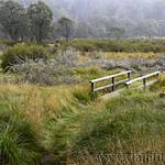 02 Viajefilos en Australia. Barrington NP 32