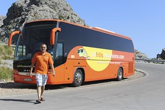 nofrills bus