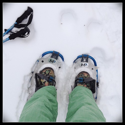 Ringing in the New Year on snowshoes. [1.365]