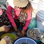 06 Ban Lung Mercado 07