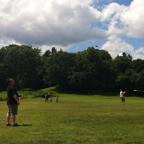 #kites