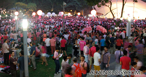 Last picture of the crowd before I left Hong Lim Park at around 7pm