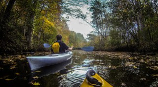 Philip on Carrick Creek