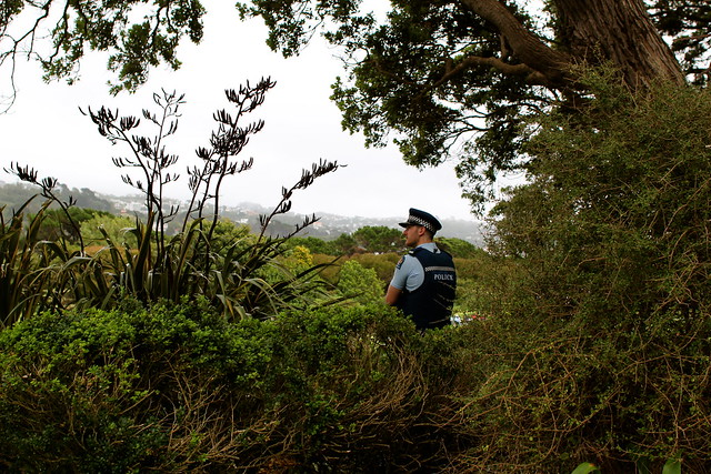 Saturday: Policeman in the bushes!