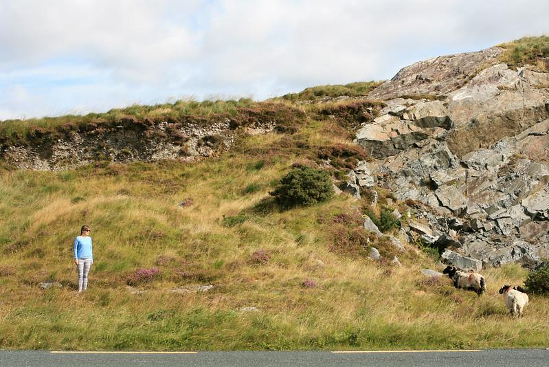 Ireland 898-2