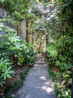 Path to Charleston Unitarian