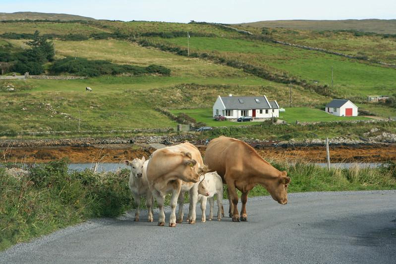 Ireland 846-2
