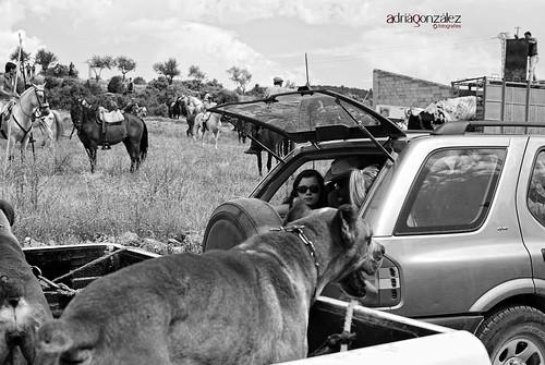 El encierro 5 by ADRIANGV2009