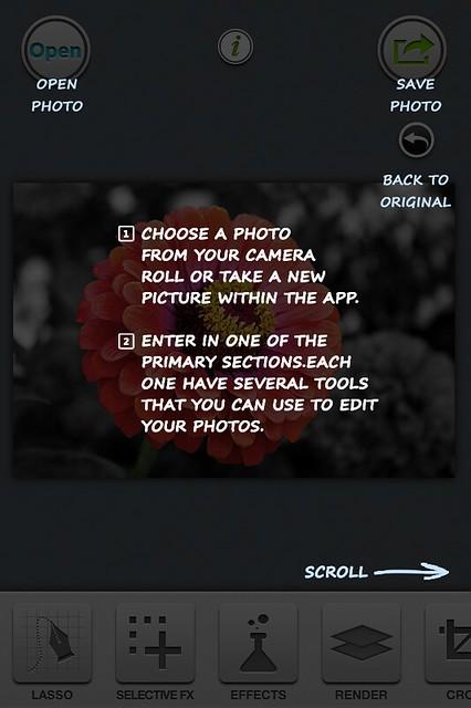 Camera Roll-6247