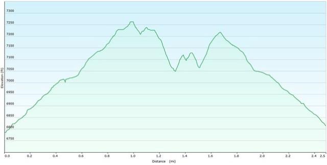 Mt. Cutler Elevation Graph