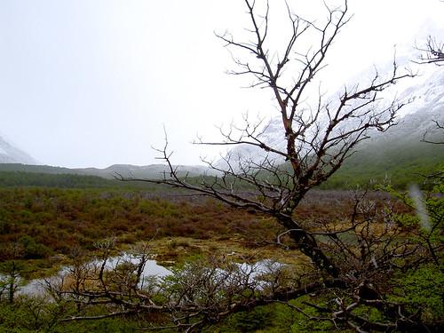 Trekking El Chaltén