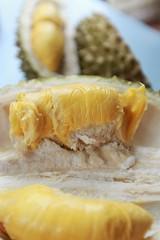 Musang King durian III