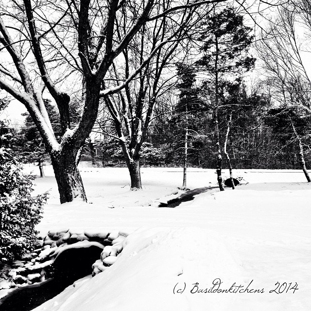 18/1/2014 - grateful {I'm very grateful to be living in such a beautiful place} #photoaday #grateful #black #white #winter #snow #princeedwardcounty