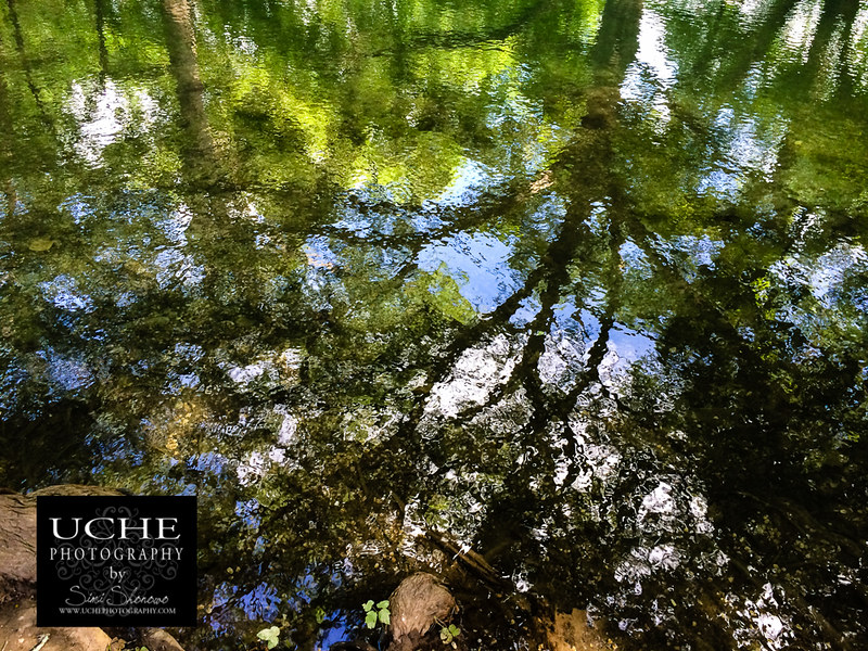 20150613.164.mobile365.wimberley river monet