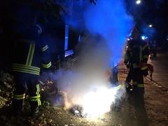 Mülltonnenbrand Mühlwiesenstr. 31.05.14