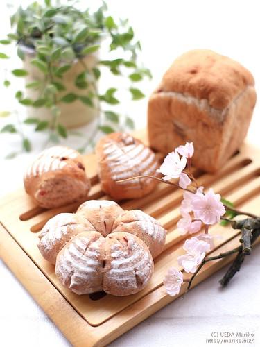 ミニ桜カンパーニュ 桜食パン 20170325-IMG_8840-1