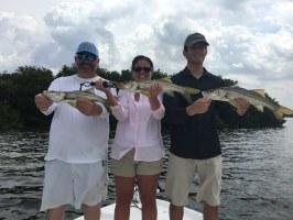 Inshore charter fishing 813-245-4738