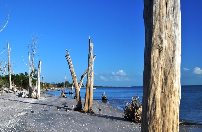 Tuesday. A Great Time to Visit the Beach. Stump Pass Beach State Park, Manasota Key, Englewood, Fla., Aug. 26, 2014