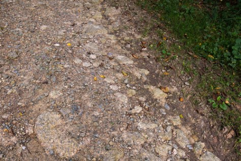 Stone-paved ancient Roman road.