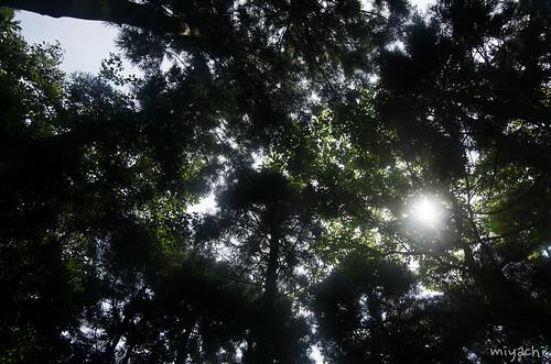 IMGP8189.jpg
