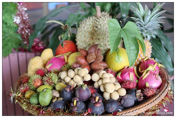 (羅勇素啪他觀光,Suphattra Land,山竹,水果,水果吃到飽,泰國,熱帶,紅毛丹,羅勇 @VIVIYU小世界
