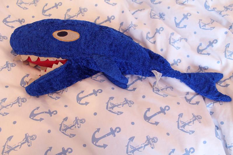 Frank the shark